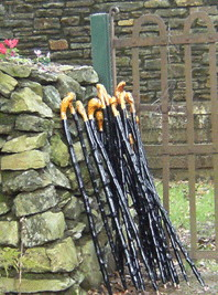 Blackthorn Walking Sticks